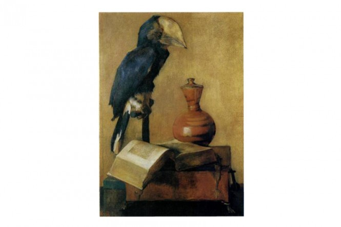 Great Black Hornbill Poster